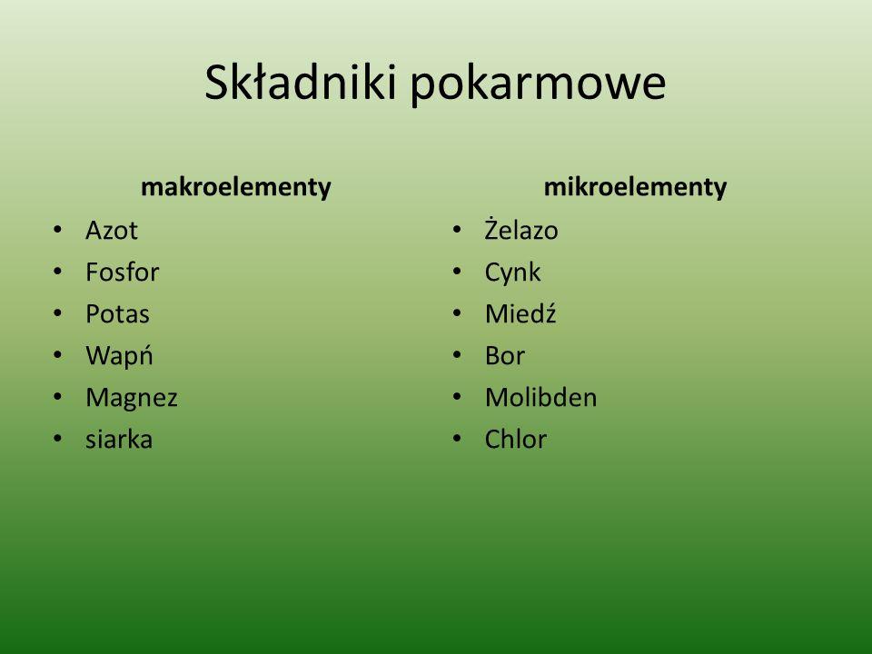 Składniki pokarmowe makroelementy mikroelementy Azot Fosfor Potas Wapń