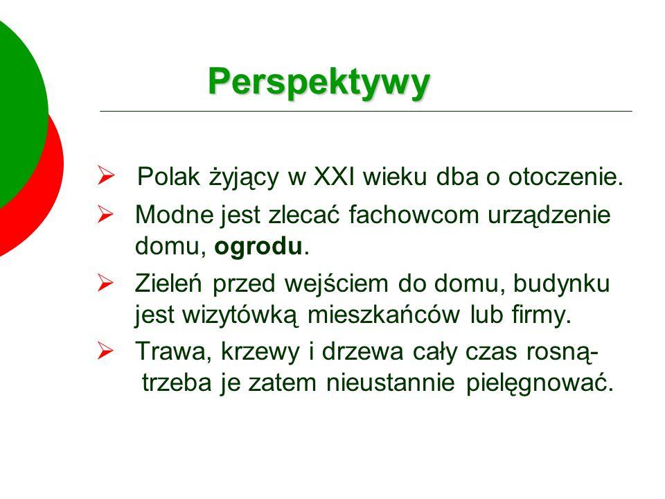 Perspektywy Polak żyjący w XXI wieku dba o otoczenie.