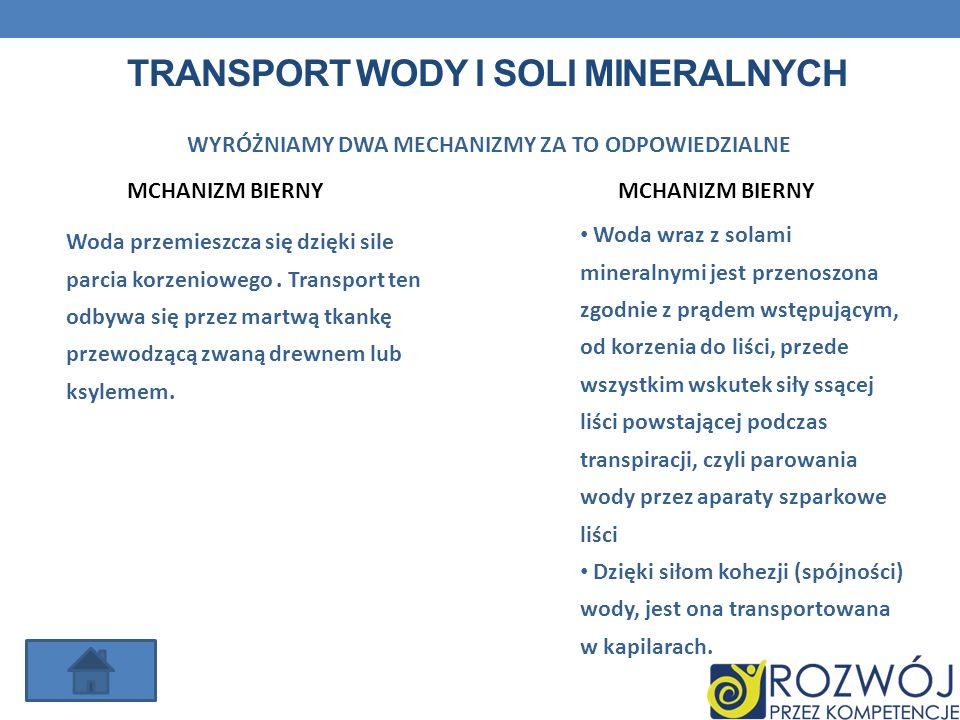 Transport wody i soli mineralnych