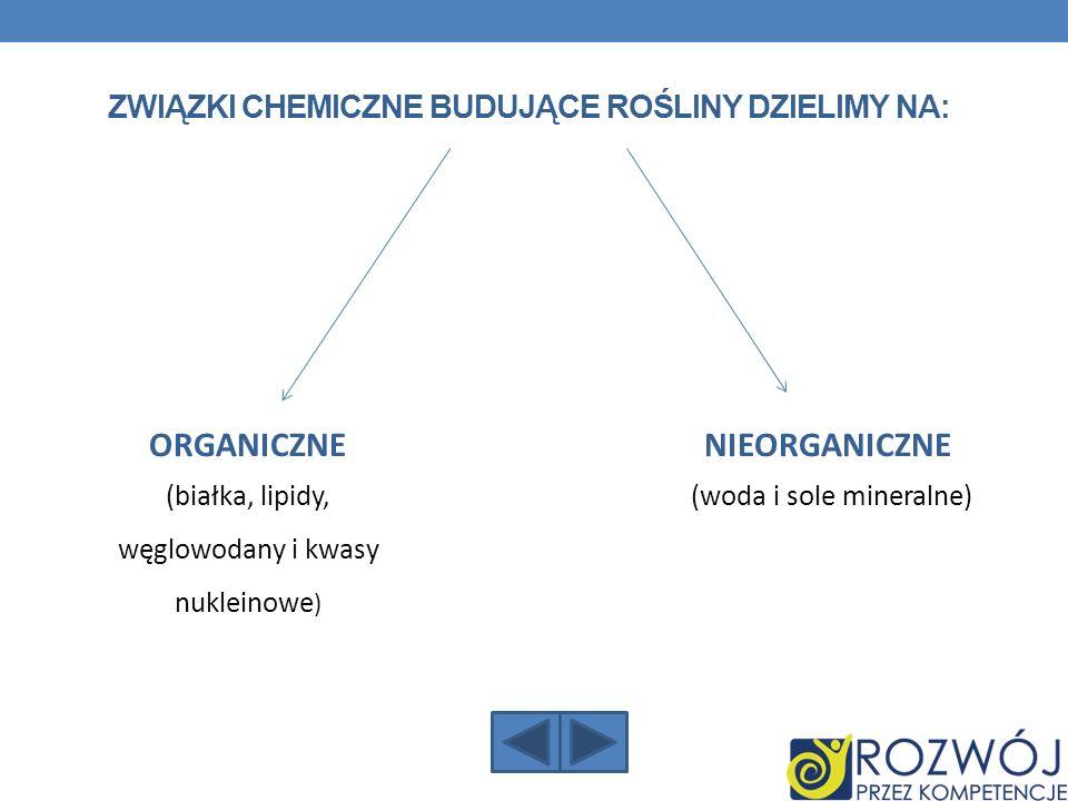 Związki chemiczne budujące rośliny dzielimy na: