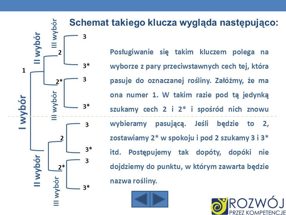 I wybór Schemat takiego klucza wygląda następująco: II wybór II wybór