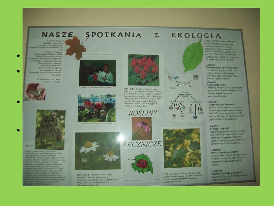 Wzbogacamy naszą wiedzę na temat ekologii
