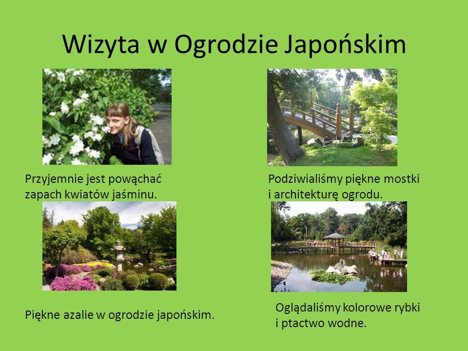 Wizyta w Ogrodzie Japońskim