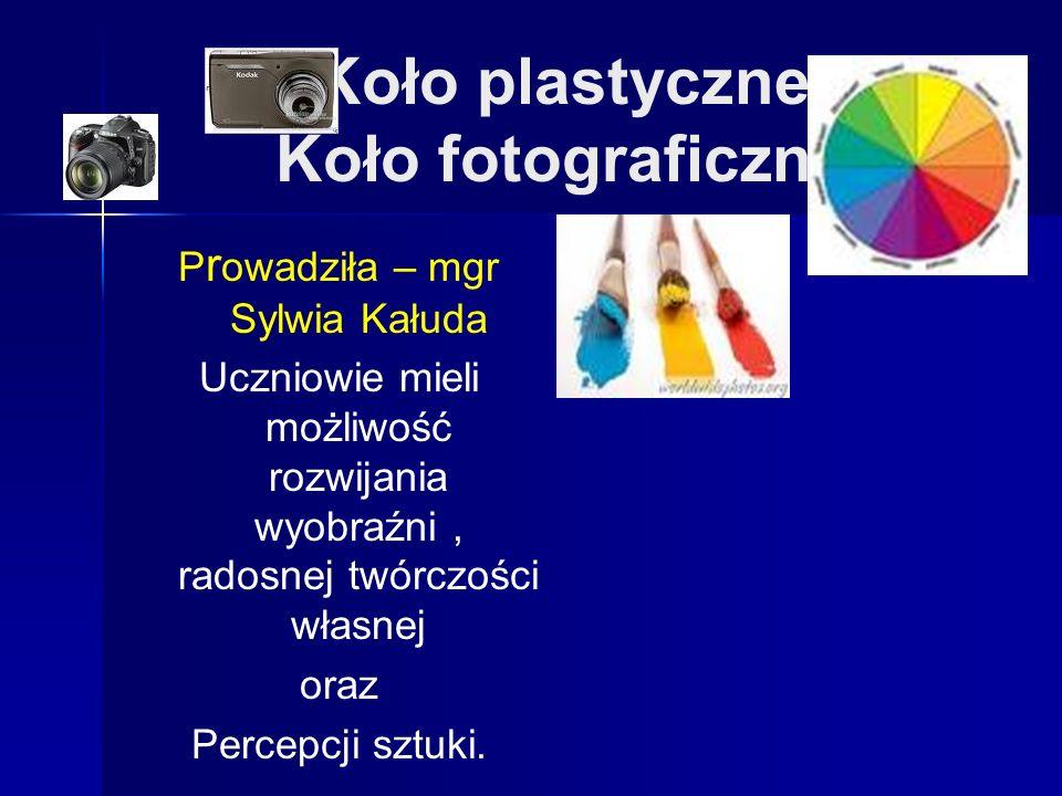 Koło plastyczne Koło fotograficzne