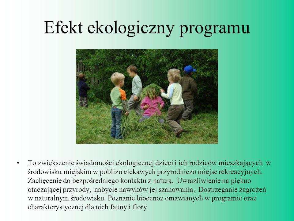 Efekt ekologiczny programu