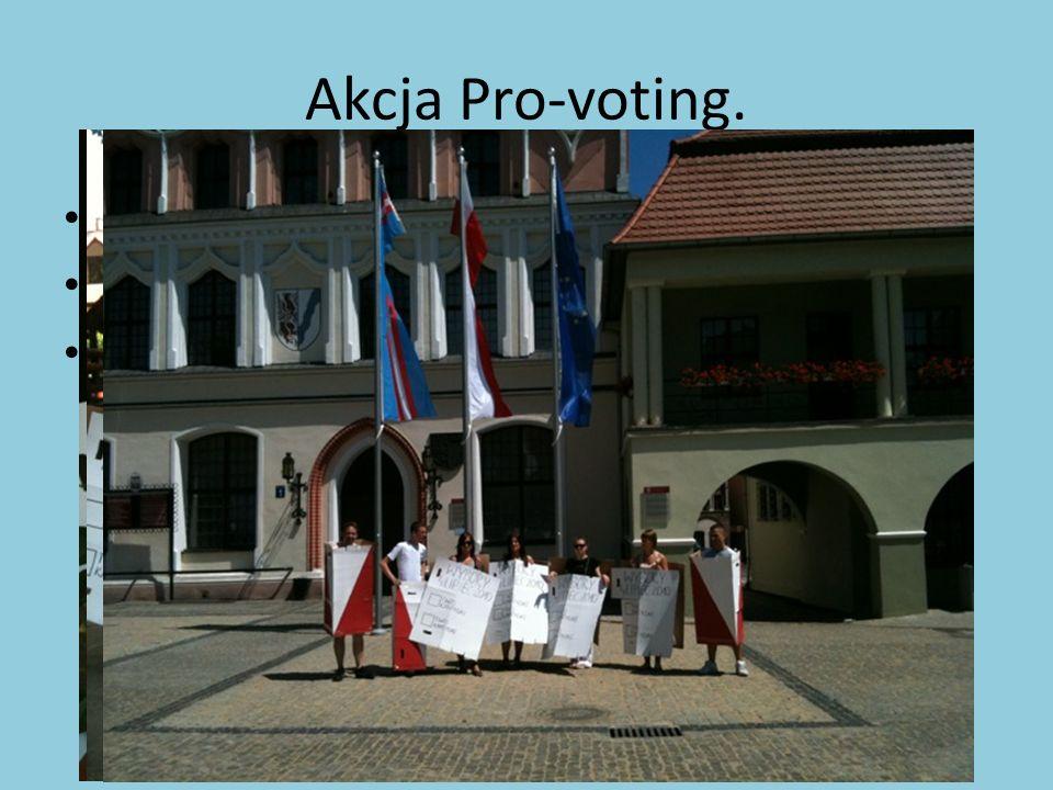 """Akcja Pro-voting. Odbyła się 3 lipca 2010 roku . """"Goń urnę! ."""