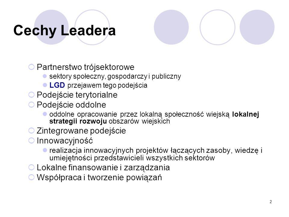 Cechy Leadera Partnerstwo trójsektorowe Podejście terytorialne