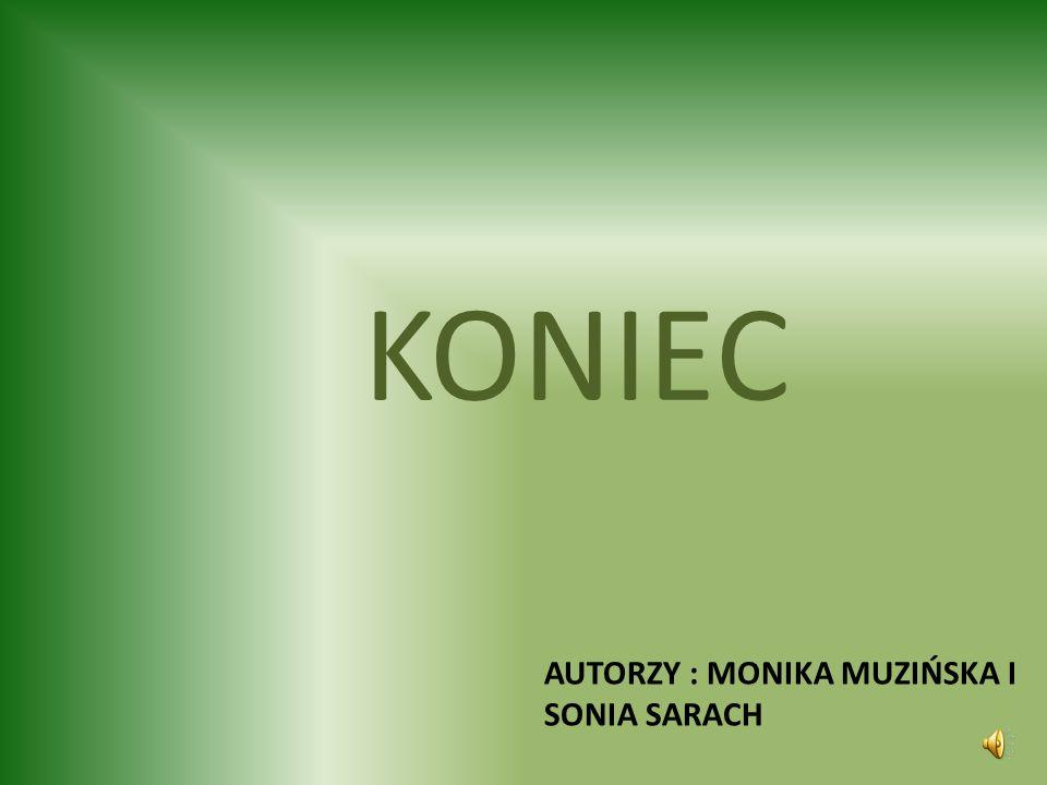 Autorzy : monika muzińska i sonia sarach