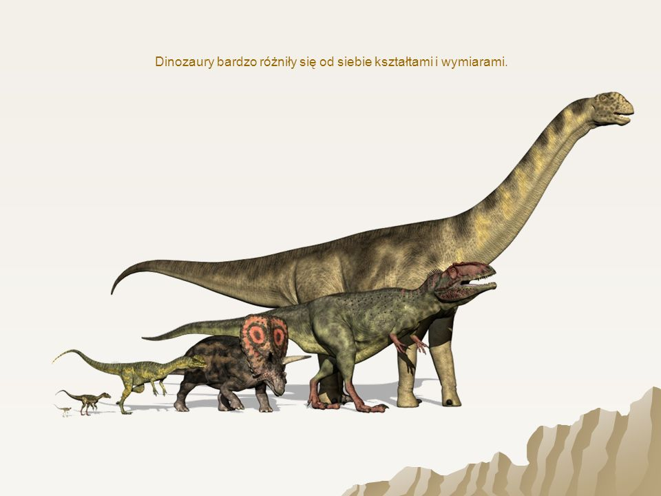 Dinozaury bardzo różniły się od siebie kształtami i wymiarami.