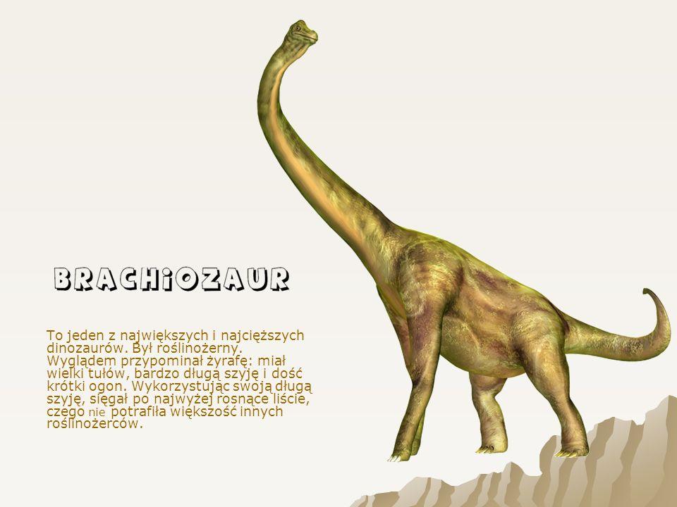 To jeden z największych i najcięższych dinozaurów. Był roślinożerny