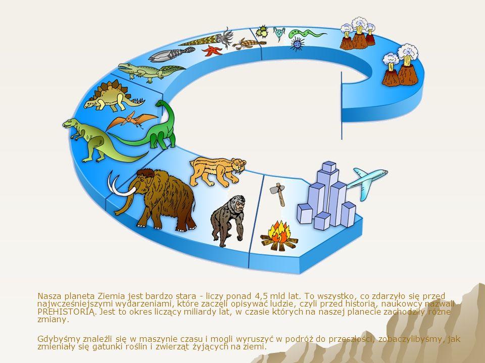 Nasza planeta Ziemia jest bardzo stara - liczy ponad 4,5 mld lat