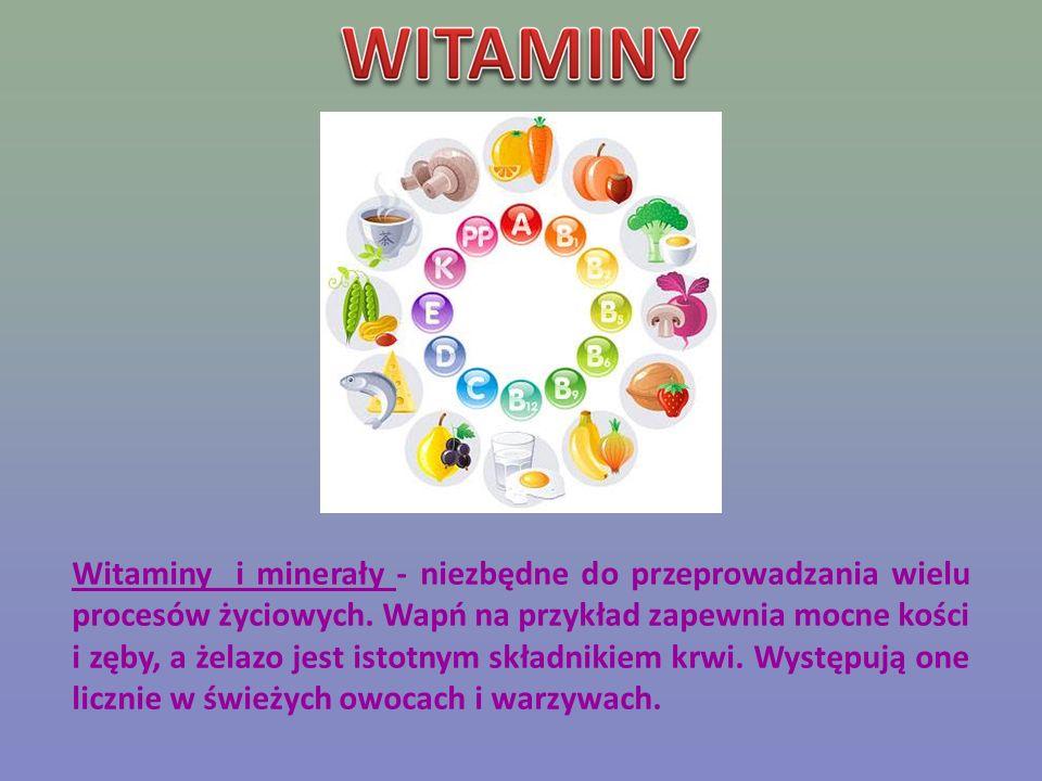 Witaminy i minerały - niezbędne do przeprowadzania wielu procesów życiowych.