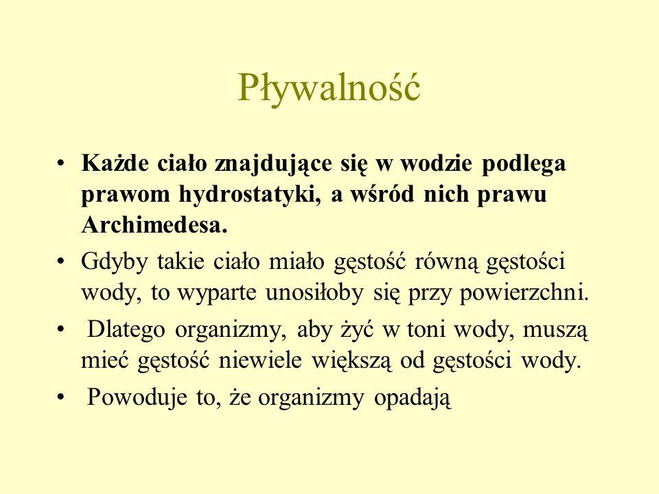 PływalnośćKażde ciało znajdujące się w wodzie podlega prawom hydrostatyki, a wśród nich prawu Archimedesa.