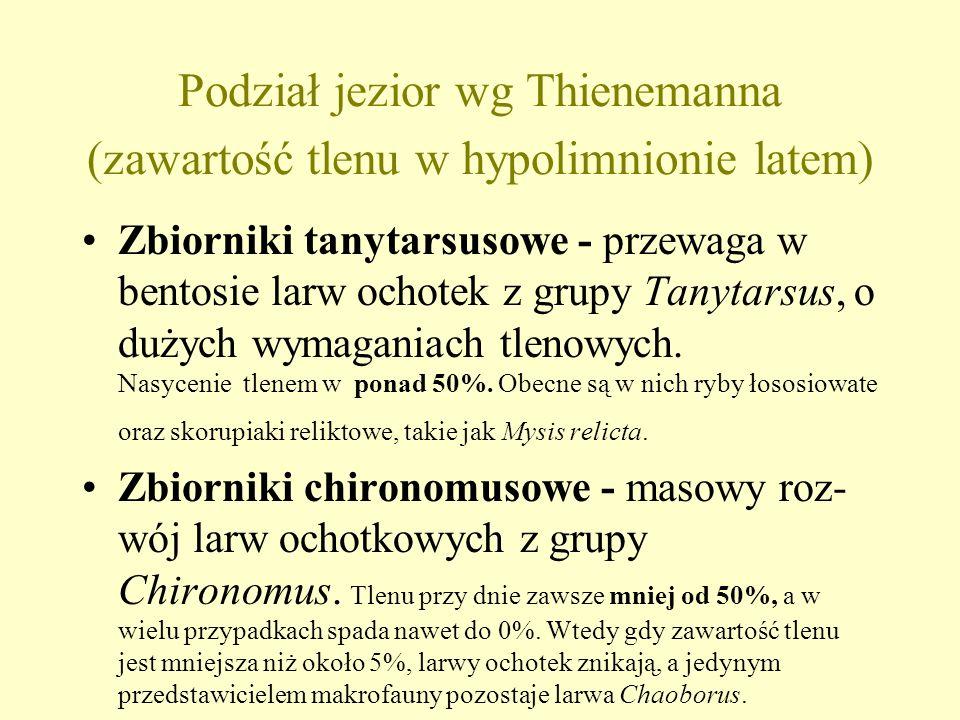 Podział jezior wg Thienemanna (zawartość tlenu w hypolimnionie latem)