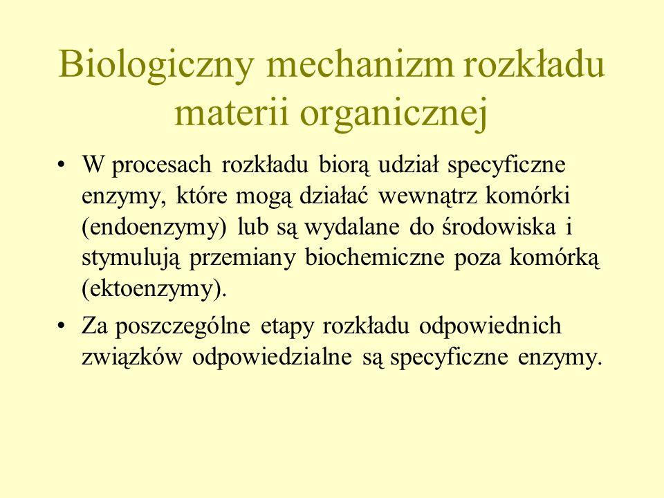 Biologiczny mechanizm rozkładu materii organicznej