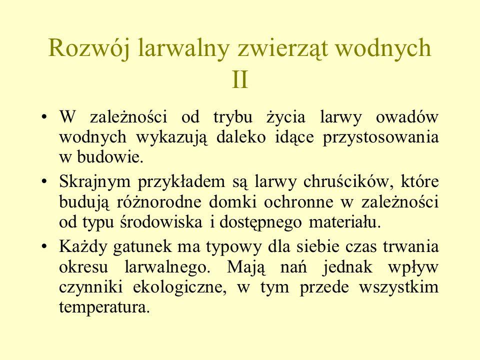 Rozwój larwalny zwierząt wodnych II