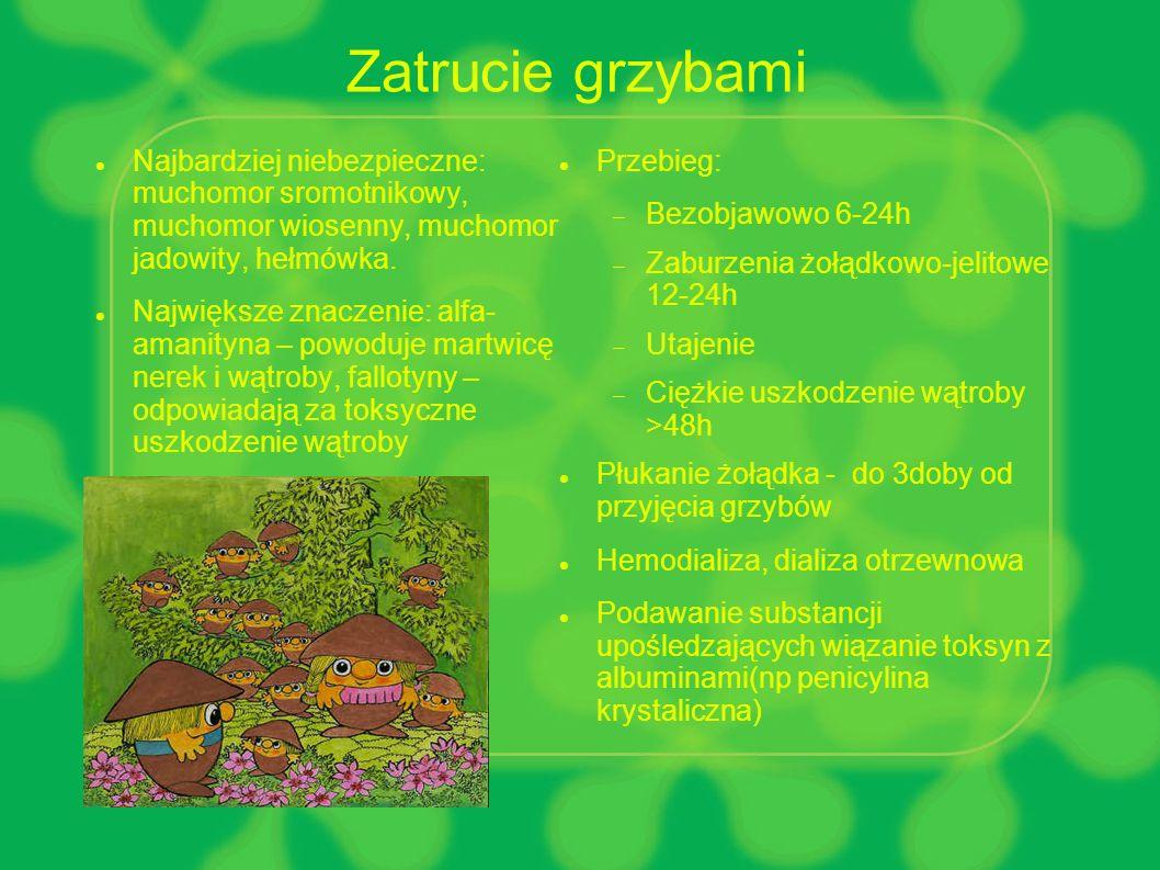 Zatrucie grzybami Najbardziej niebezpieczne: muchomor sromotnikowy, muchomor wiosenny, muchomor jadowity, hełmówka.