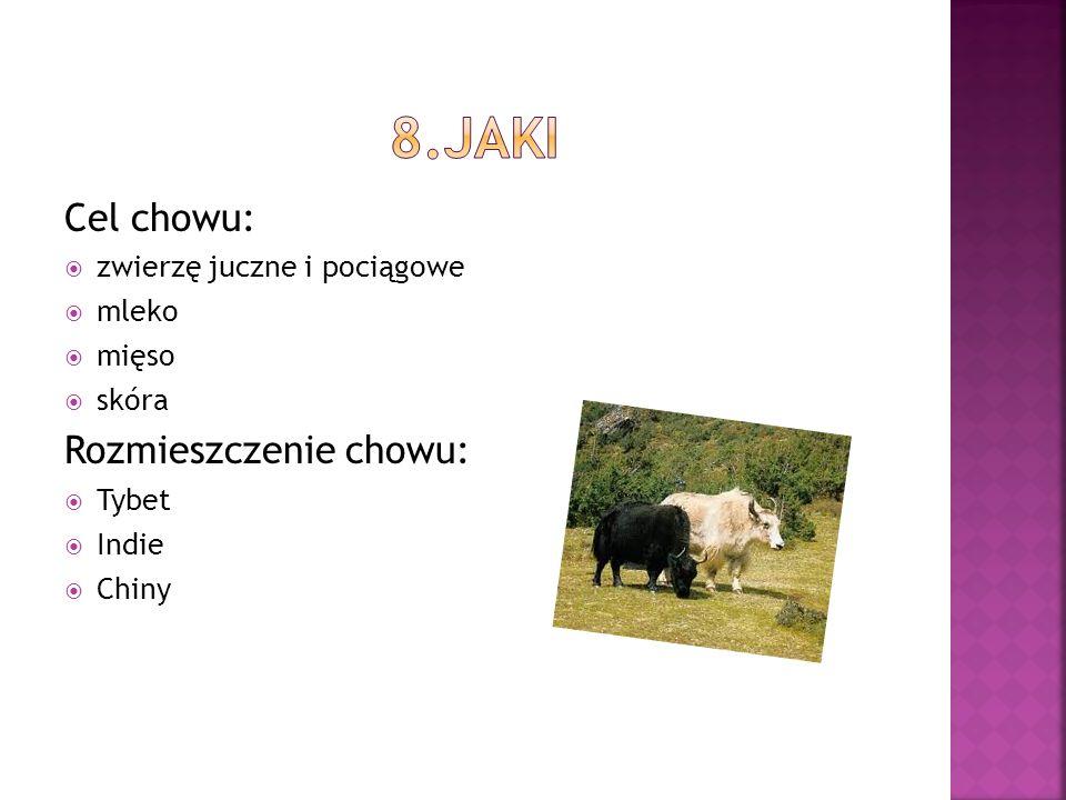 8.jaki Cel chowu: Rozmieszczenie chowu: zwierzę juczne i pociągowe