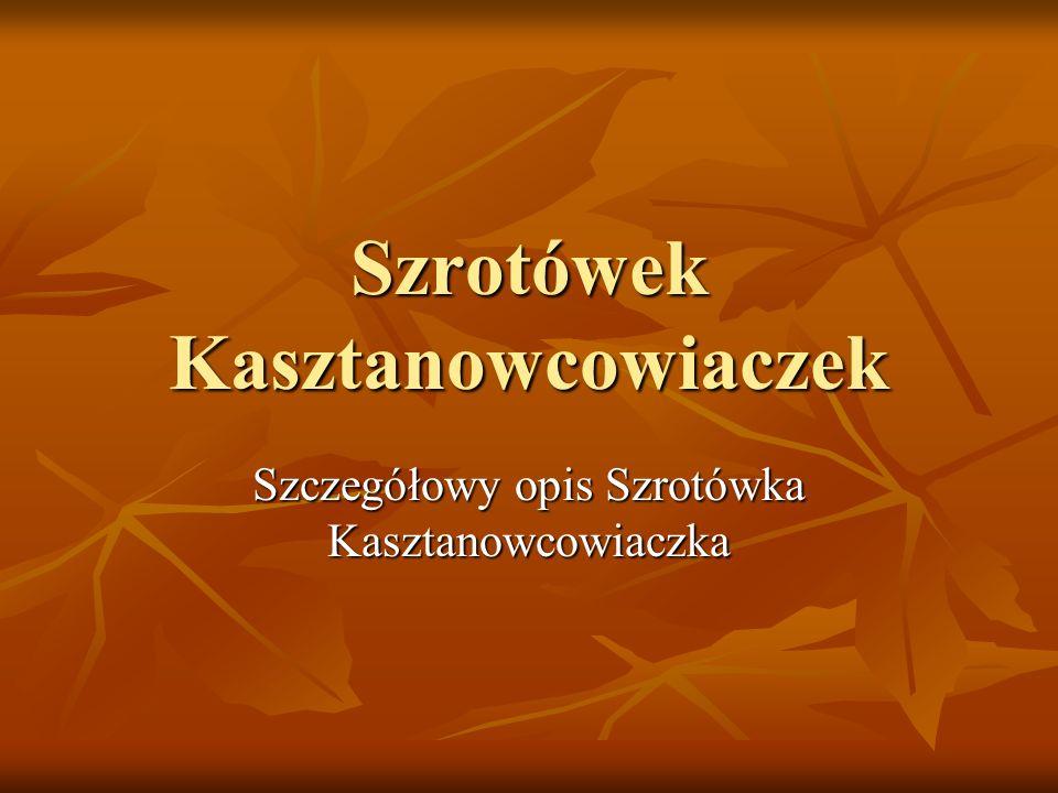 Szrotówek Kasztanowcowiaczek