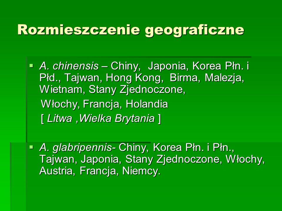 Rozmieszczenie geograficzne