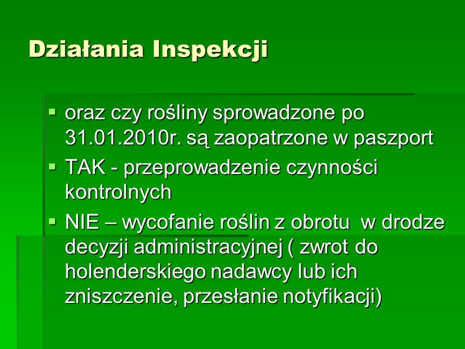 Działania Inspekcji oraz czy rośliny sprowadzone po 31.01.2010r. są zaopatrzone w paszport. TAK - przeprowadzenie czynności kontrolnych.
