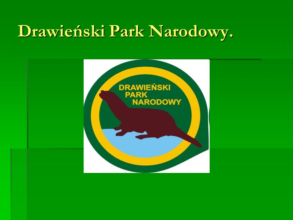 Drawieński Park Narodowy.