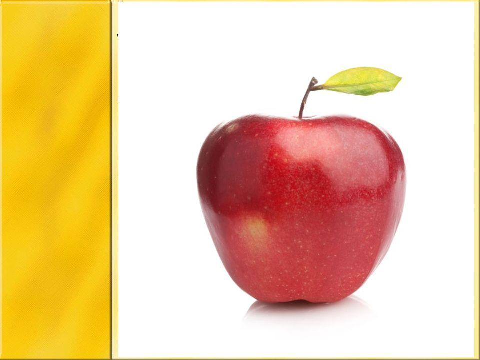 Warzywa i owoce Pamiętaj o witaminach, które dostarczą ci warzywa czy owoce (pomidor, ogórek, jabłko, sałata, szczypiorek, rzodkiewka, rzeżucha)