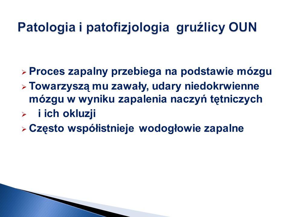 Patologia i patofizjologia gruźlicy OUN