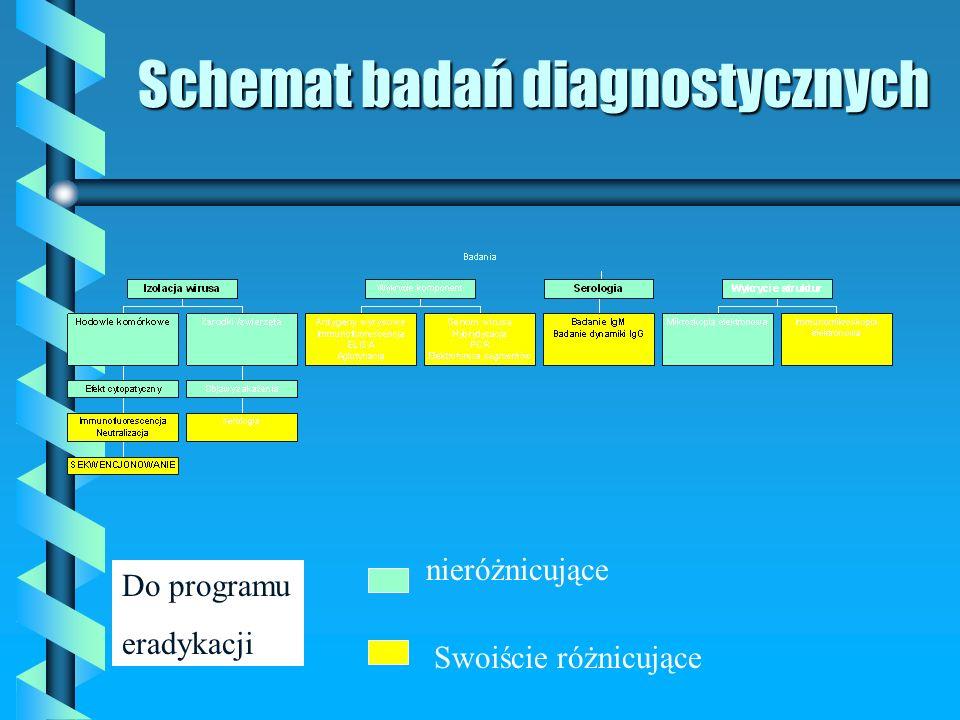 Schemat badań diagnostycznych