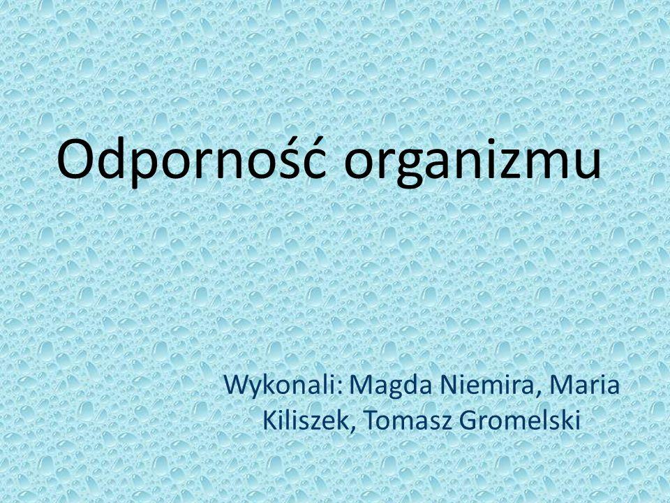 Wykonali: Magda Niemira, Maria Kiliszek, Tomasz Gromelski