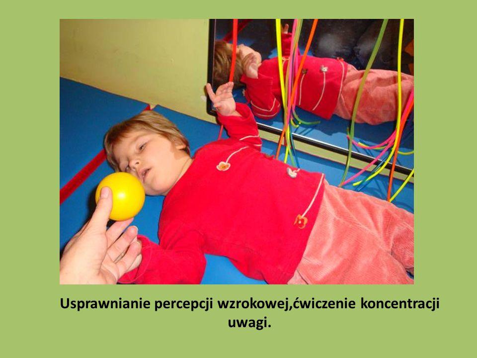 Usprawnianie percepcji wzrokowej,ćwiczenie koncentracji uwagi.