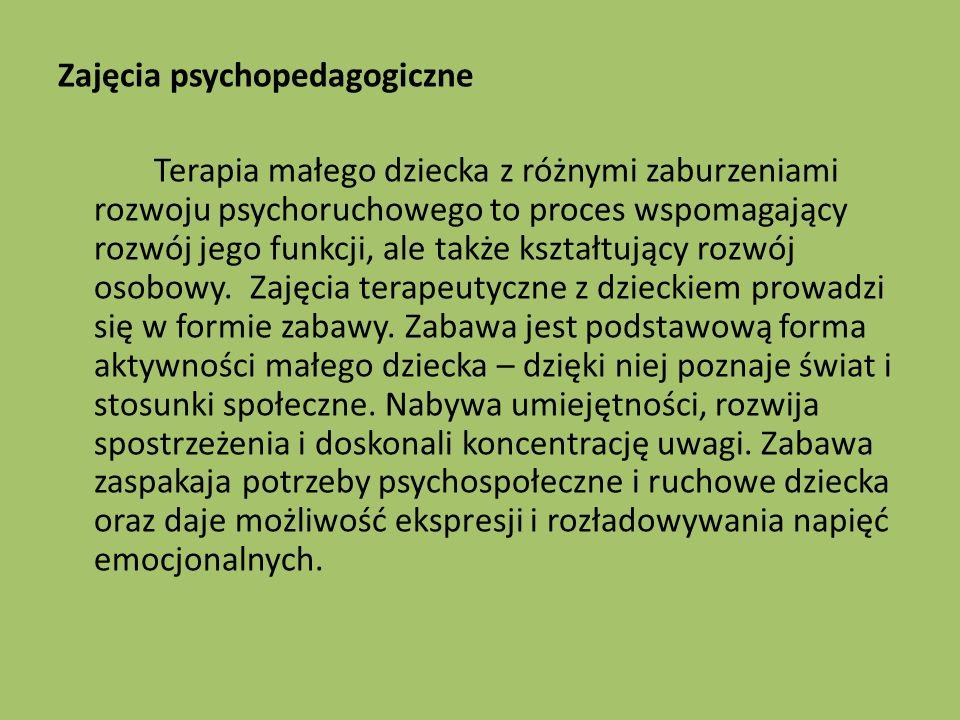 Zajęcia psychopedagogiczne