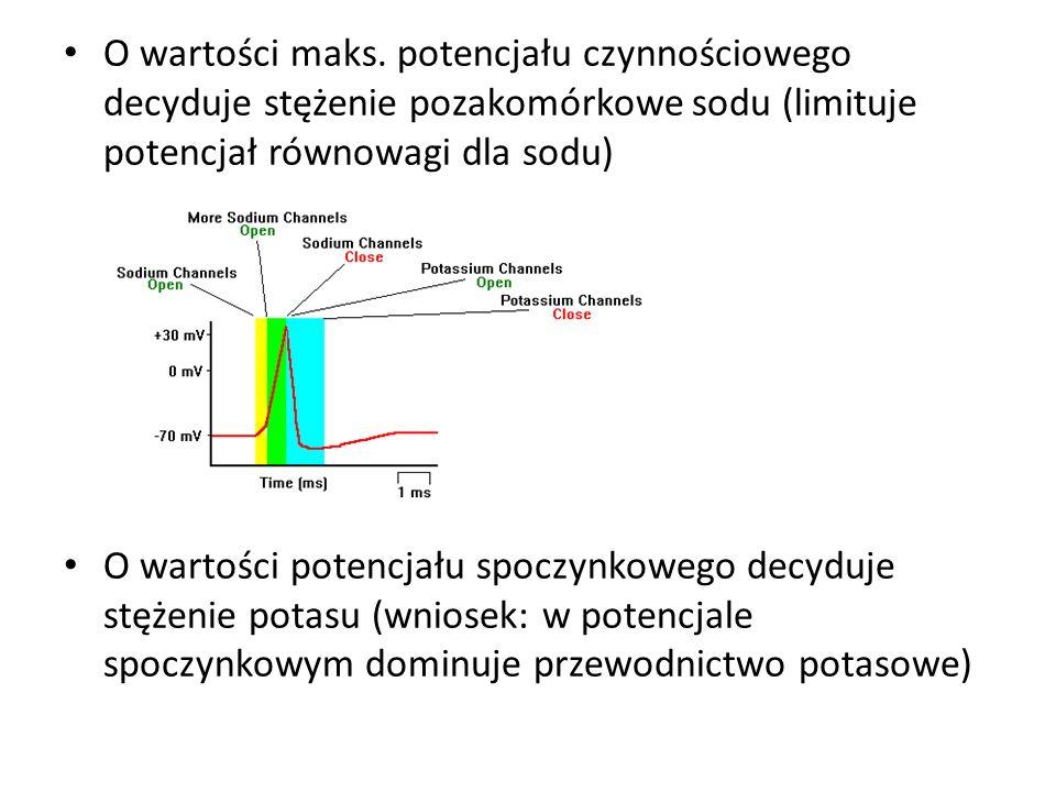 O wartości maks. potencjału czynnościowego decyduje stężenie pozakomórkowe sodu (limituje potencjał równowagi dla sodu)