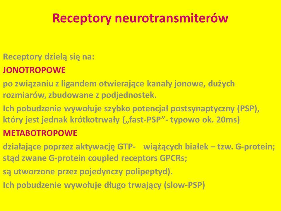 Receptory neurotransmiterów