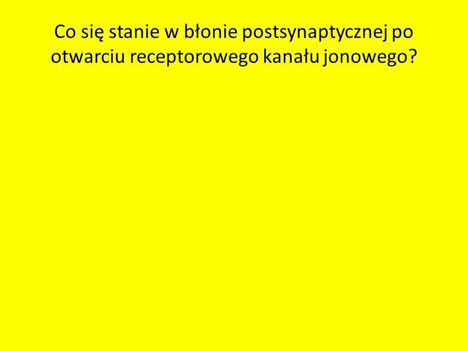 Co się stanie w błonie postsynaptycznej po otwarciu receptorowego kanału jonowego