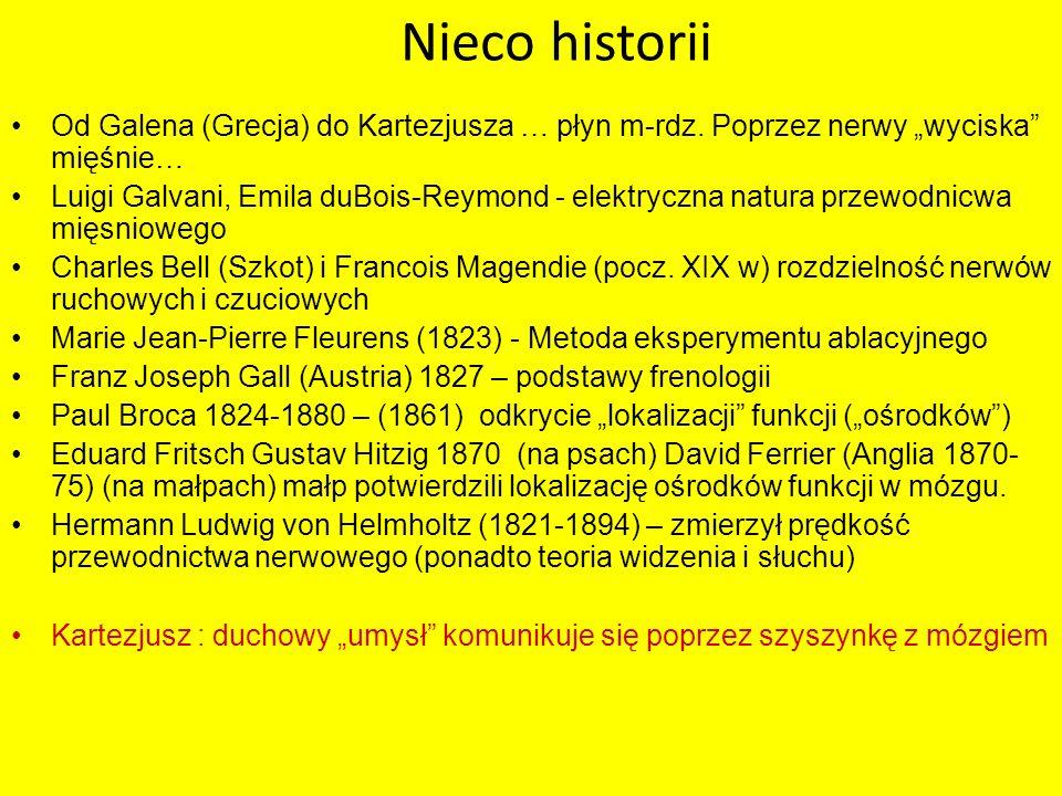 """Nieco historii Od Galena (Grecja) do Kartezjusza … płyn m-rdz. Poprzez nerwy """"wyciska mięśnie…"""