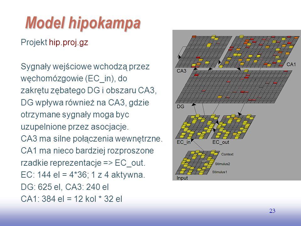 Model hipokampa Projekt hip.proj.gz Sygnały wejściowe wchodzą przez