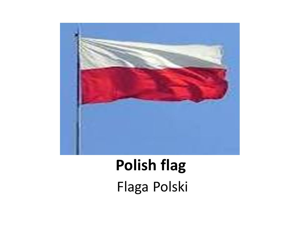 Polish flag Flaga Polski