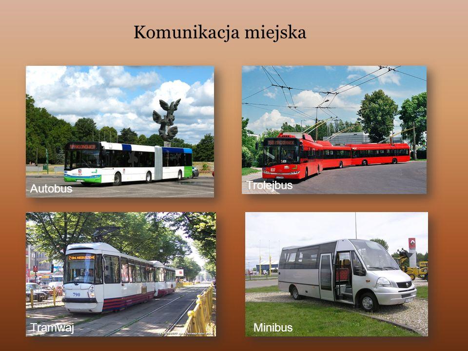 Komunikacja miejska Trolejbus Autobus Tramwaj Minibus