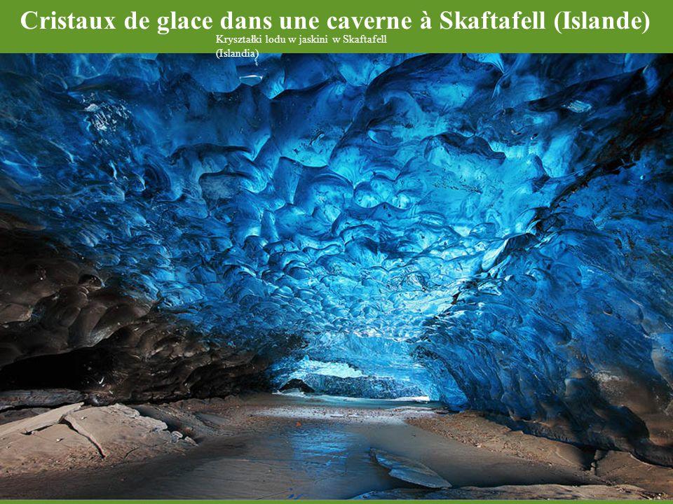 Cristaux de glace dans une caverne à Skaftafell (Islande)