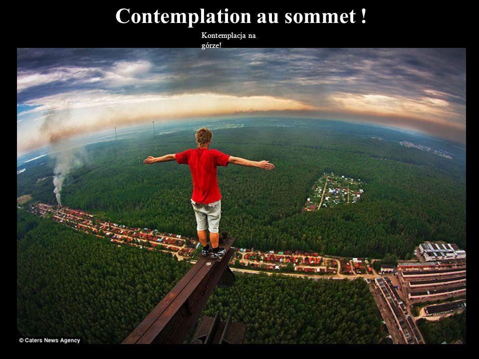 Contemplation au sommet !