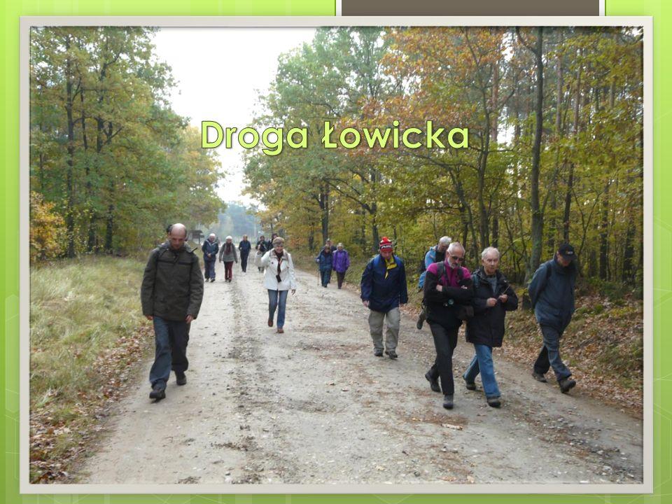 Droga Łowicka