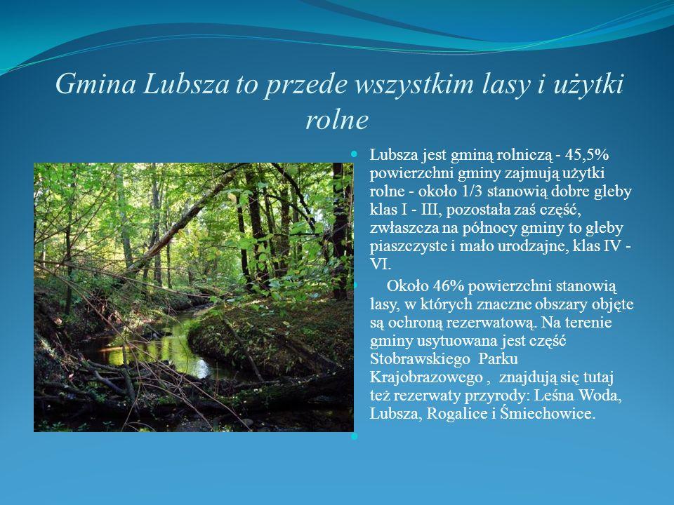 Gmina Lubsza to przede wszystkim lasy i użytki rolne