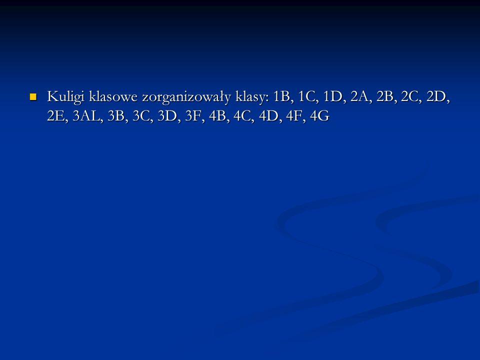 Kuligi klasowe zorganizowały klasy: 1B, 1C, 1D, 2A, 2B, 2C, 2D, 2E, 3AL, 3B, 3C, 3D, 3F, 4B, 4C, 4D, 4F, 4G