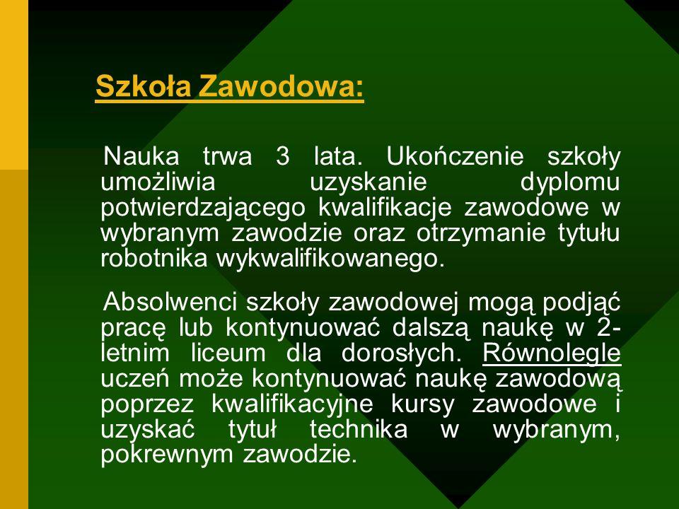 Szkoła Zawodowa: