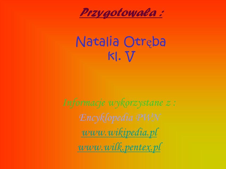 Przygotowała : Natalia Otręba kl. V