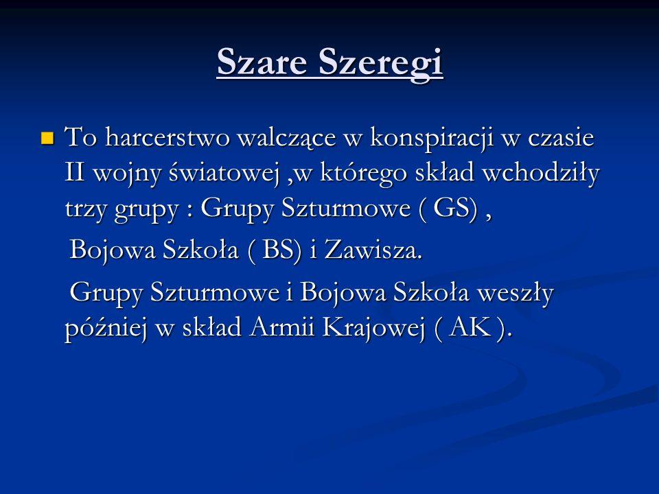 Szare Szeregi To harcerstwo walczące w konspiracji w czasie II wojny światowej ,w którego skład wchodziły trzy grupy : Grupy Szturmowe ( GS) ,