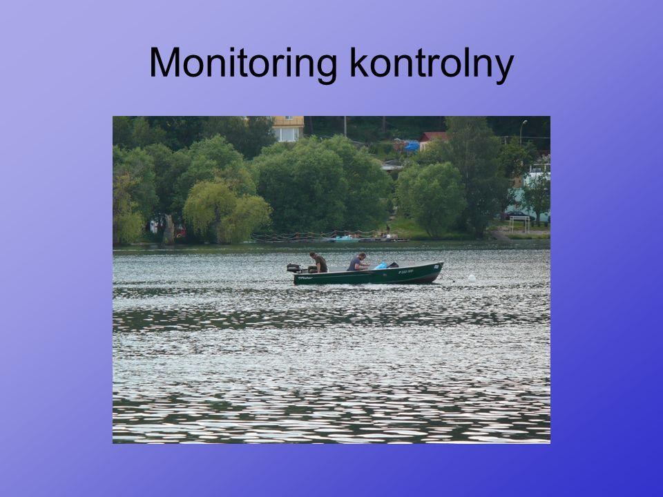 Monitoring kontrolny