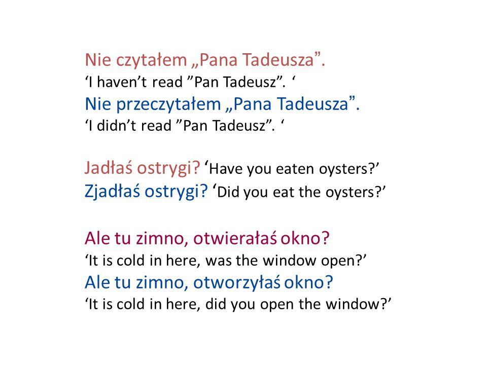 """Nie czytałem """"Pana Tadeusza . 'I haven't read Pan Tadeusz"""