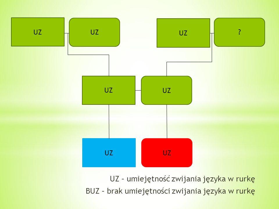 UZ – umiejętność zwijania języka w rurkę